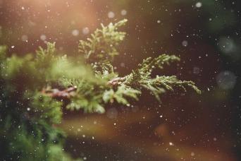 winter-1791370_960_720