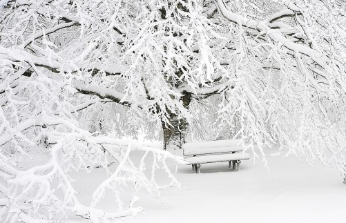 snow-1711697_960_720